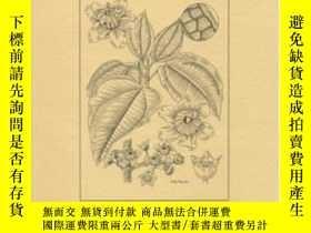 二手書博民逛書店Systematic罕見Studies In The Melastomataceae: Bellucia Lore
