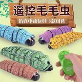 抖音玩具創意禮品遙控毛毛蟲 仿真電動玩具整人整蠱玩具 生日禮物