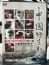 挖寶二手片-P17-176-正版DVD-其他【中國野生動物5:中國稀有的猴子】-休閒類(直購價)