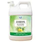 【奇奇文具】花仙子 JJ2281YXF 1加侖 茶樹抗菌檸檬 洗手乳