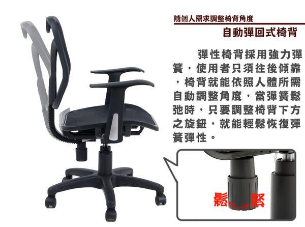 《嘉事美》艾佛特全網高背附頭枕辦公椅 電腦椅 人體工學 書桌 穿衣鏡 台灣製造