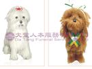 【大堂人本】溫暖心生活系列-寶貝寵物狗(紙紮) (另有客製化紙紮)