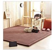 ☆歡樂寶貝商城☆190*240 2.5CM 纖細超厚珊瑚絨地毯 地墊 爬行墊 遊戲墊 加厚地毯