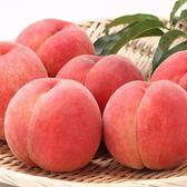 【果之蔬-全省免運】和歌山室外水蜜桃原裝盒X1盒(4kg±10%/盒12-13入)