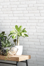 白色文化石【法國壁紙】磚紋牆紙...