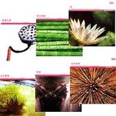 【軟體採Go網】IDEA意念圖庫 東方創新全系列(01)~(06)共6片影像圖庫★廣告設計花卉植物素材★