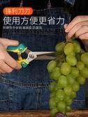 園藝剪 修果剪葡萄枝的專用剪刀采果翹頭稀果剪蔬果剪尖頭水果不銹鋼修枝 印象部落