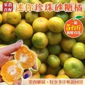 【果農直配-全省免運】 珍珠砂糖橘禮盒X1盒(5斤±10%含盒重/盒)