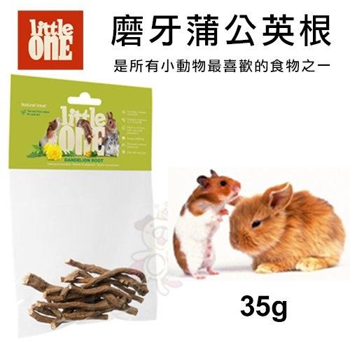 *WANG*德國 LITTLE ONE 磨牙蒲公英根 35g 完整保存蒲公英根部所含的所有營養元素