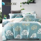 ✰雙人 薄床包兩用被四件組✰ 100%純天絲《幽夢》
