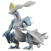 Pokemon精靈寶可夢 ML-10 焰白酋雷姆 神奇寶貝公仔 (TAKARA TOMY) PC14583