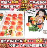 【果之蔬-全省免運】和歌山室外水蜜桃原裝盒X1盒(4kg±10%/盒12-15入)