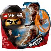 【LEGO 樂高積木】Ninjago忍者系列-阿剛 土之飛龍大師 LT-70645