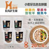 【毛麻吉寵物舖】HyperrRAW超躍 小豹牙五色生鮮餐 綜合口味 20克 四件組