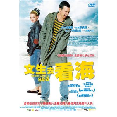 文生去看海DVD