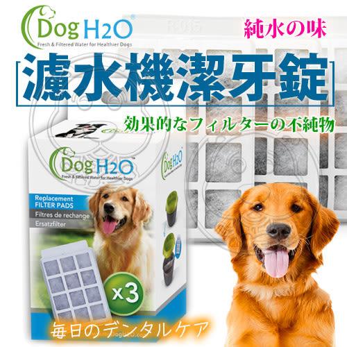 【zoo寵物商城】Dog&Cat》H2O有氧濾水機6L活性炭濾棉(一盒3入)
