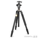 攝影架 單反相機三腳架便攜微單攝影攝像手機自拍支架拍照三角架云臺 晶彩