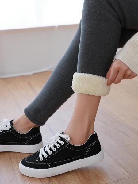 打底褲  超厚羊羔絨一體純棉打底褲女士加絨加厚秋冬季內外穿保暖秋褲兔絨