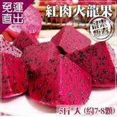 預購-家購網嚴選 屏東紅肉火龍果 5斤/盒 大 (約7-8顆/盒)【免運直出】
