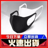 [24H 台灣現貨] 限量10組 賠本下殺 防霧口罩黑色明星同款海綿口罩(三入組)