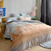 義大利La Belle《洛德城堡》特大立體雪雕絨防蹣抗菌吸濕排汗被套床包組