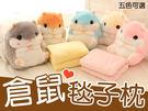 【AJ009】 交換禮物首選-24H快速發貨 可愛5色超柔倉鼠抱枕 空調毯 抱枕毯 毯子 娃娃被子 倉鼠娃娃