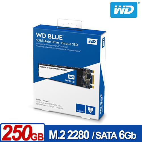 WD 藍標 SSD 250GB M.2 SATA 3D NAND SSD 固態硬碟