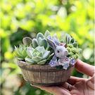 CARMO花朵兔兔木桶多肉花盆盆栽(單入...