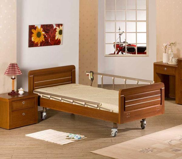 醫療器材用品 二馬達電動床 660-2