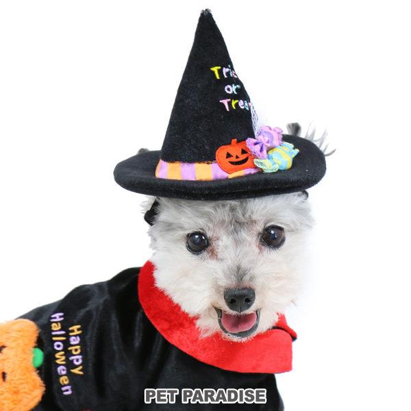 【PET PARADISE 寵物精品】NARIKIRI 2019年 Trick or Treat巫婆帽造型變裝 【4S-3S】 萬聖節變裝