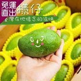 鮮果日誌 盛夏土芒果(4.5台斤禮盒裝)【免運直出】