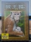 挖寶二手片-0B01-849-正版DVD-其他【猴王國】-紀錄片(直購價)