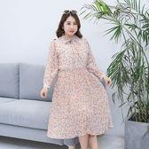 中大尺碼~百褶大擺蝴蝶結領長袖連衣裙(XL~4XL)