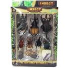 獨角仙模型 鍬形蟲 甲蟲模型 HJ278-3(有2組)/一組入(共一套9隻)(促180) 牛角蟲 仿真昆蟲 雙叉犀金龜