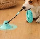 寵物玩具 狗狗玩具耐咬磨牙寵物解悶神器幼犬狗咬自己玩吸盤拔河拉力漏【快速出貨八折搶購】