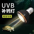 uvb龜燈uva全光譜太陽燈泡烏龜龜缸曬...