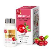 Y&Z圓源齋 蔓越莓Plus+膠囊 45粒/瓶◆德瑞健康家◆