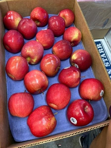 【果之蔬-全省免運】美國富士蘋果45-55入【約10KG±10%】