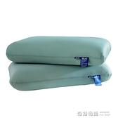 枕頭單人枕芯男家用一對裝酒店枕雙人記憶棉護頸椎助睡眠硬高學生 奇妙商鋪