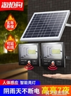 LED太陽能燈人體感應戶外新農村庭院投光路燈室外家用照明一拖二 快意購物網
