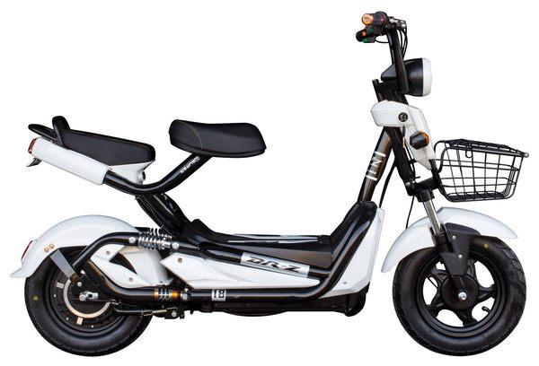 電動自行車 48V20A鉛酸電池 雙人座輔助自行車 前後避震 台灣組裝 有保固