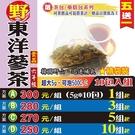 【溫氣▪東洋蔘茶▶10入】買5送1║人蔘茶 沖泡參茶飲║漢方養生茶 溫和補氣 滋補 可回沖茶包