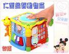 麗嬰兒童玩具館~谷雨專櫃-益智早教玩具-六面益智動物盒/積木盒.雙語探索六面盒.音樂拍拍鼓