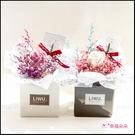 LIWU在你身邊 滿天星 乾燥盆花 開幕誌慶 生日禮物 交換禮物 畢業 母親節禮物(2色可挑)P001
