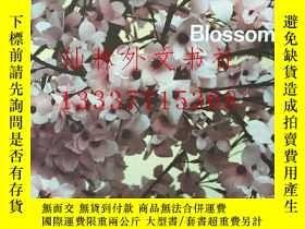 二手書博民逛書店【罕見】托馬斯·迪曼德 Thomas Demand: Bloss