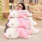 公仔 娃娃韓國豬公仔懶人抱枕超萌玩偶女生可愛女孩毛絨玩具