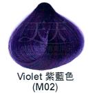 【特殊色專家】果酸彩色染髮霜 85ml (M02_紫藍色) [40796]