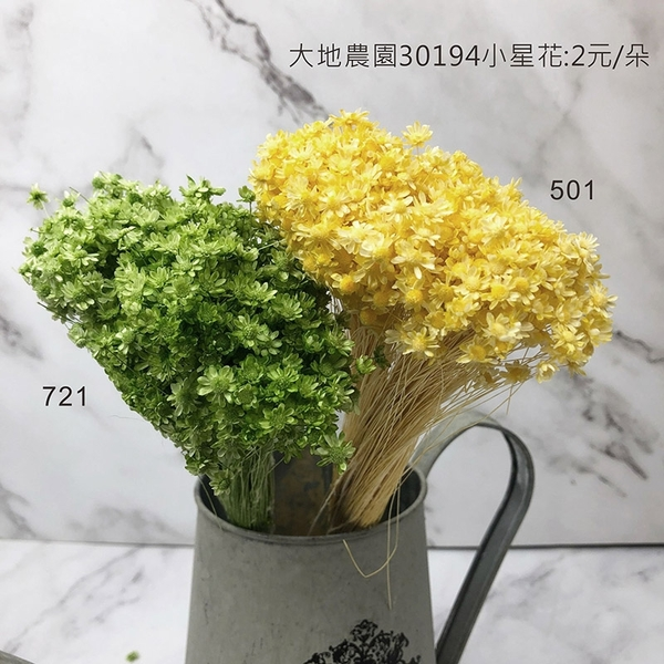 日本進口大地農園 30194小星花-乾燥花圈 乾燥花束 不凋花 拍照道具 室內擺飾 乾燥花材-20元/10支