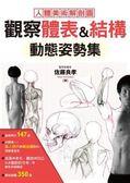 觀察體表&結構 動態姿勢集:最標準的人體美術解剖圖!這樣畫人物,才逼真!