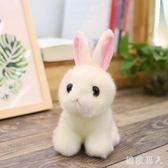 毛絨玩具 可愛小白兔公仔超萌仿真兔子小號娃娃韓版女孩生日禮物 df2345【極致男人】